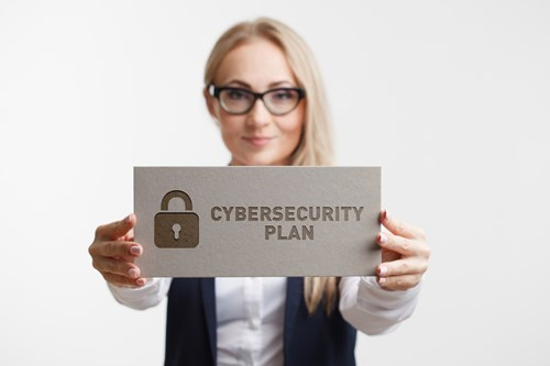 Develop your cybersecurity plan with Fragglestorm™
